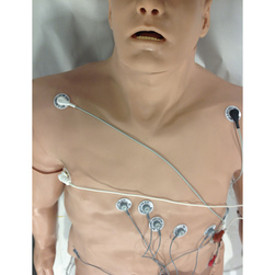 <strong>Simulaids®</strong> 12 Lead Arrhythmia Simulator with Manikin Overlay,  Zoll, Large