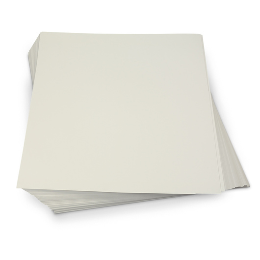 Nasco <q>Thrifty Buy</q> Poster Board Special - 22 in. x 28 in. - 24 pt.