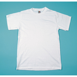Fruit of the Loom® White T-Shirt - Adult Size Small (34-36)
