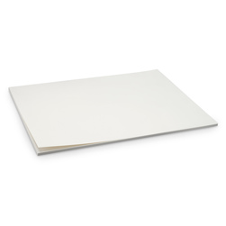 White Tag Board - 22-1/2 in. x 28-1/2 in. - Heavy