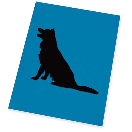 Silhouette Paper - Pkg. of 25, 10 in. x 15 in.