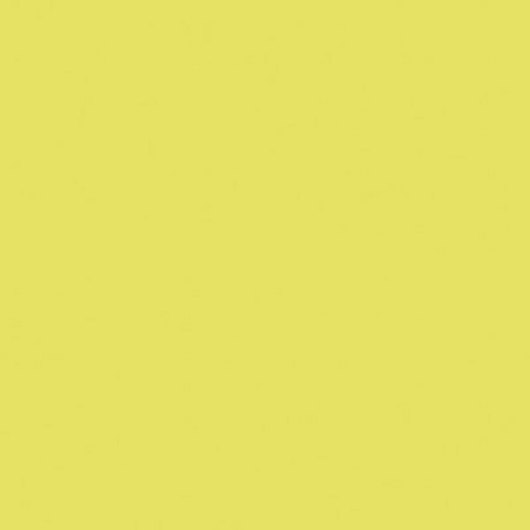 Nasco Country School™ Tempera Paint - Fluorescent Yellow/Chartreuse - Quart