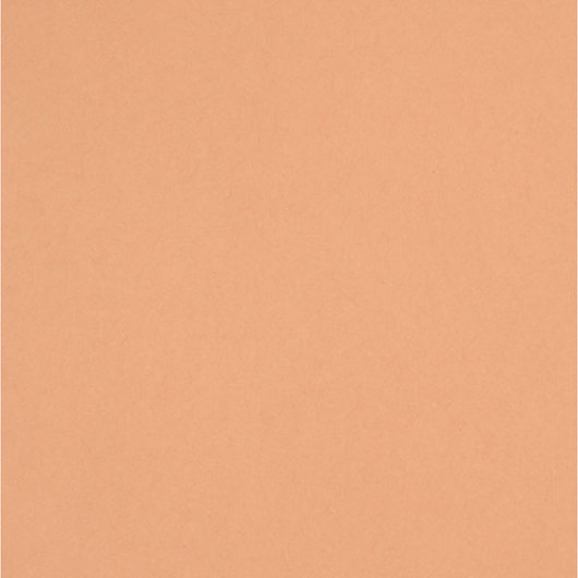 Pacon® Tru-Ray® Fade-Resistant Construction Paper - Tan - 12 in. x 18 in.