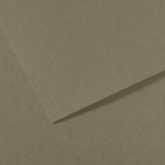 Canson® Mi-Teintes® Paper - Pkg. of 10 - 19 in. x 25 in. - 98 lb. - Sand