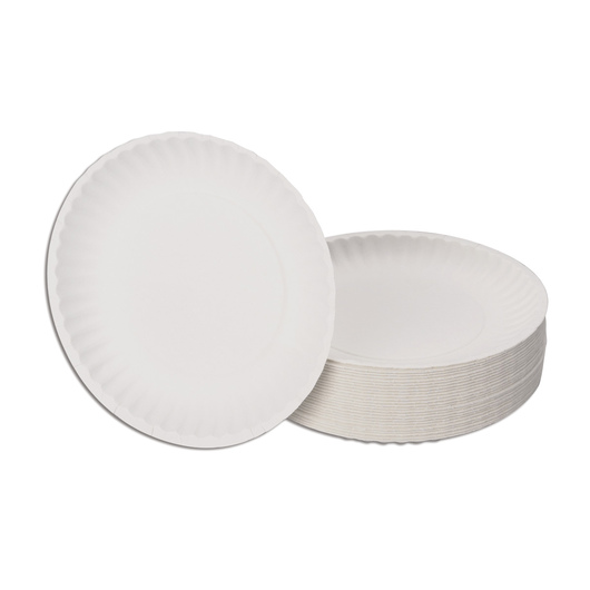 6 in. Paper Plates – Pkg. of 100