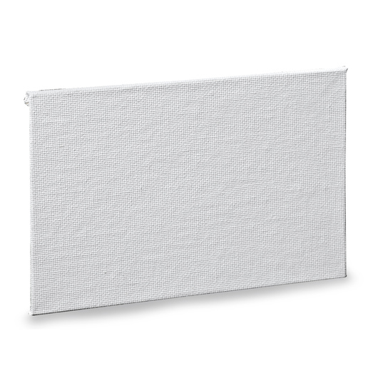 Nasco Canvas Board - 4 in. x 6 in.
