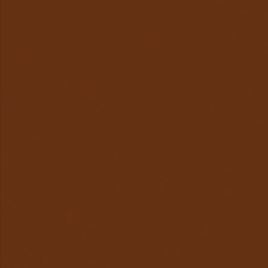 Nasco Country School™ Construction Paper - 50 Sheets - 12 in. x 18 in. - Dark Brown