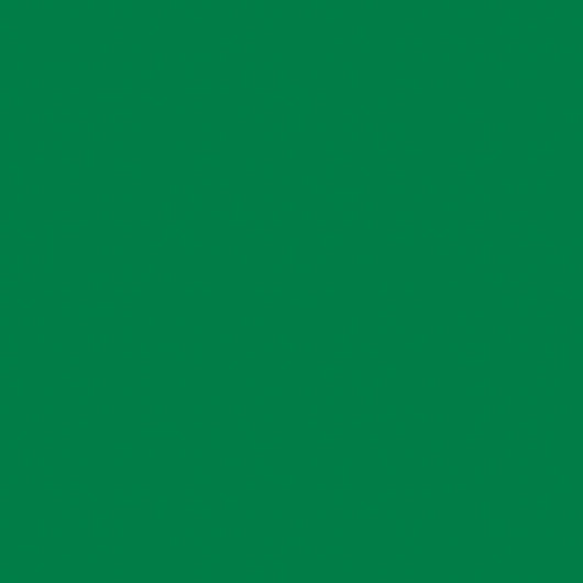 Nasco Country School™ Construction Paper - 50 Sheets - 12 in. x 18 in. - Holiday Green