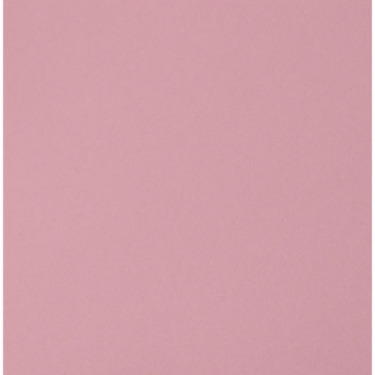 Nasco Premium Construction Paper - 9 in. x 12 in. - 50 Sheets - 65 lb. - Light Pink