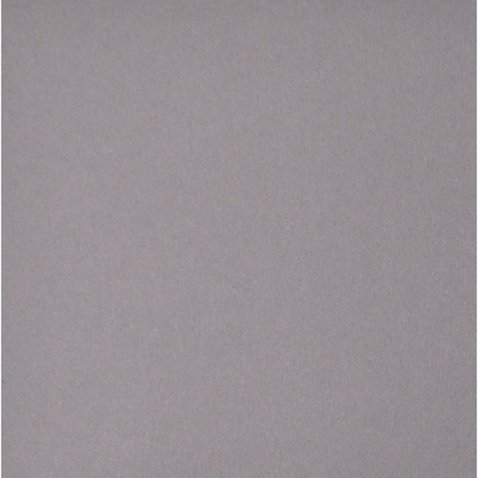 Nasco Premium Construction Paper - 50 Sheets - 12 in. x 18 in. 65 lb. - Dark Gray
