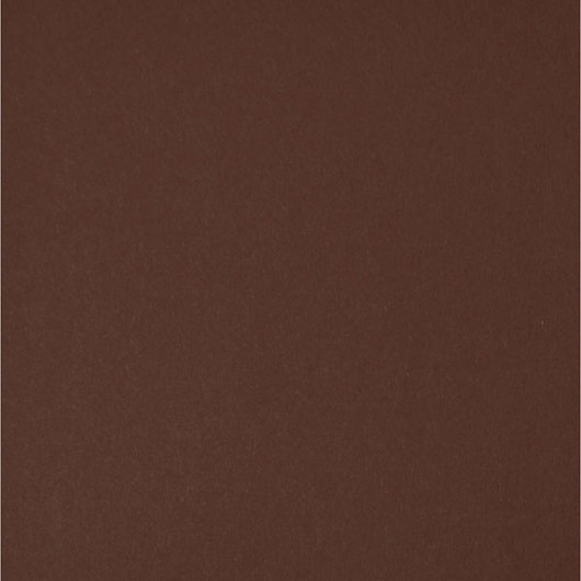 Nasco Premium Construction Paper - 50 Sheets - 12 in. x 18 in. 65 lb. - Chocolate Brown