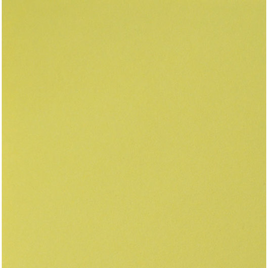 Nasco Premium Construction Paper - 50 Sheets - 12 in. x 18 in. 65 lb. - Lemon Yellow