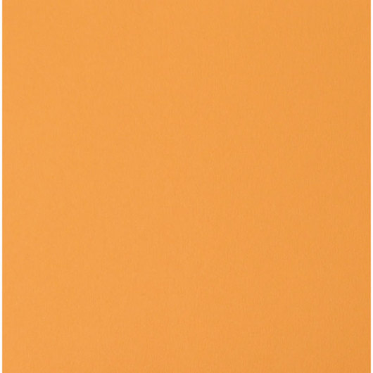 Nasco Premium Construction Paper - 50 Sheets - 12 in. x 18 in. 65 lb. - Orange Yellow