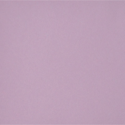 Nasco Premium Construction Paper - 50 Sheets - 12 in. x 18 in. 65 lb. - Pale Lilac