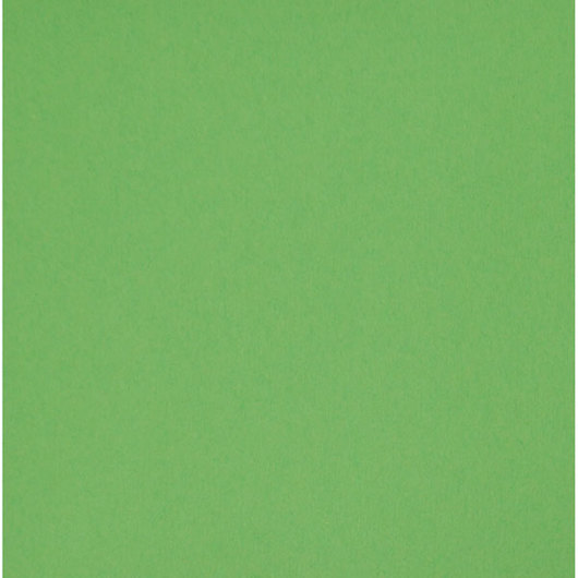 Nasco Premium Construction Paper - 50 Sheets - 12 in. x 18 in. 65 lb. - Light Green