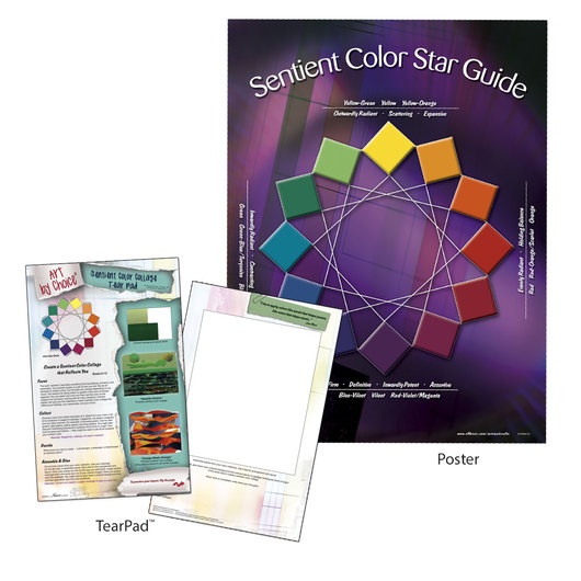 nasco art by choice sentient color set teaching aids resources