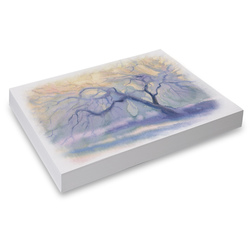 Canson Foundation Student Watercolor Paper - Pkg. of 500 Sheets