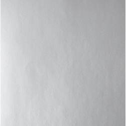 Nasco Premium Metallic Construction Paper - 50 Sheets - 9 in. x 12 in. 65 lb. - Silver