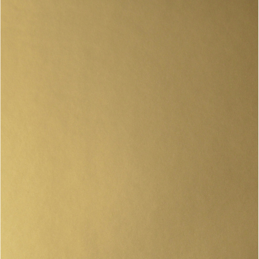 Nasco Premium Metallic Construction Paper - 50 Sheets - 9 in. x 12 in. 65 lb. - Gold