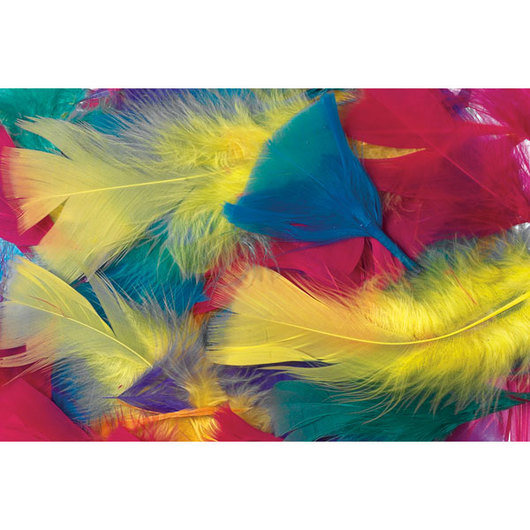 Feather Value Pack - Vibrant, 70 Grams