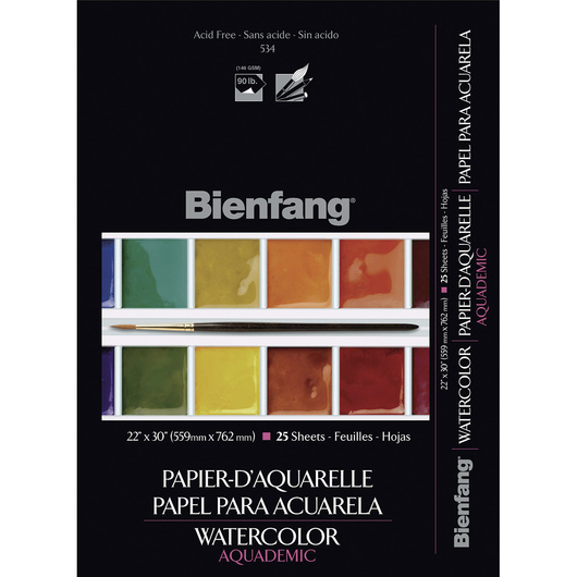 Bienfang® School-Grade #534 Aquademic Lightweight Watercolor Paper - 22 in. x 30 in. - Pkg. of 25 - 90 lb.