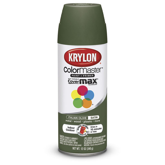 Krylon® Indoor/Outdoor Paint - 12 oz. - Satin Italian Olive