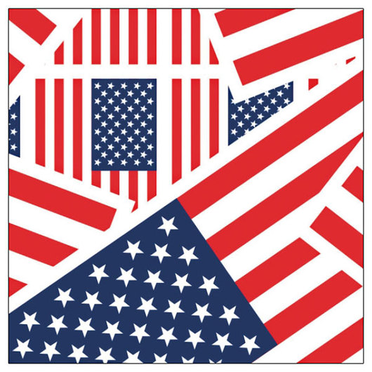 Duck® Brand Patterned Duct Tape - U.S. Flag