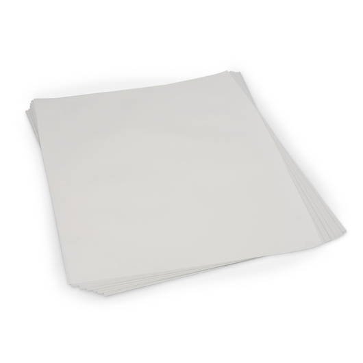 Canson® Heavyweight Drawing Paper - Pkg. of 25 Sheets - White