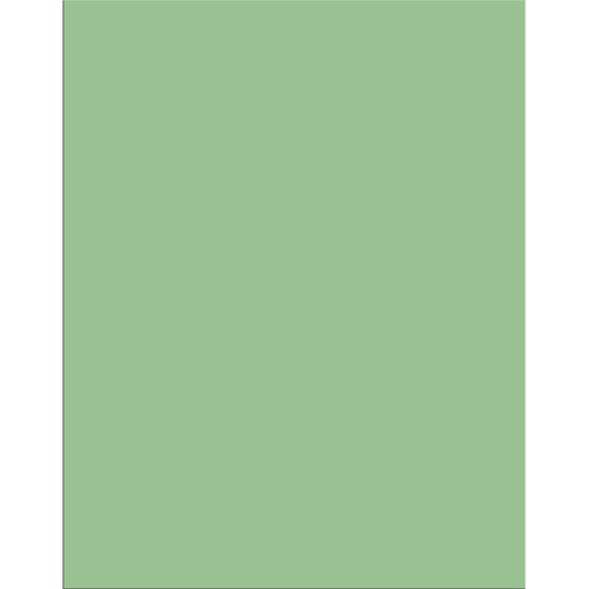 Pacon® Peacock® Railroad Board - Pkg of 25 Sheets - 22 in. x 28 in. - Light Green