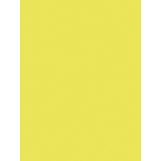 Pacon® Tru-Ray® Sulphite Construction Paper - 76 lb. - 50 Sheets - 9 in. x 12 in. - Lively Lemon