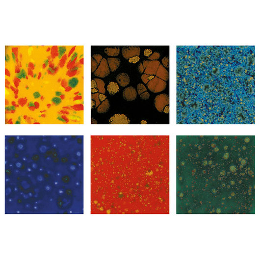 Mayco® Jungle Gem™ Glazes Set #3 - Pint - 6-Color Set