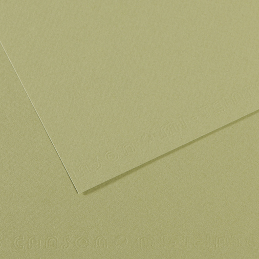 Canson® Mi-Teintes® Paper - 19-1/2 in. x 25-1/2 in. - Light Green