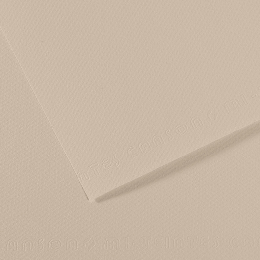 Canson® Mi-Teintes® Paper - 19-1/2 in. x 25-1/2 in. - Eggshell