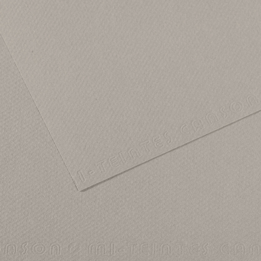 Canson® Mi-Teintes® Paper - 19-1/2 in. x 25-1/2 in. - Flannel Gray