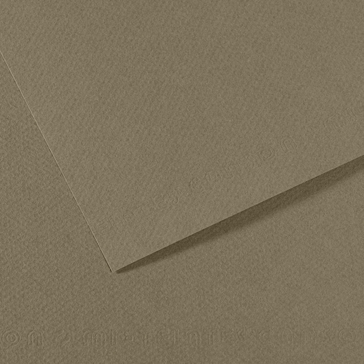 Canson® Mi-Teintes® Paper - 19-1/2 in. x 25-1/2 in. - Sand