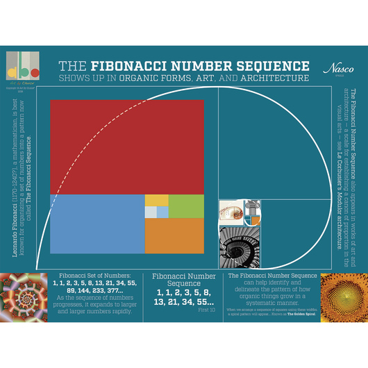 nasco art by choice fibonacci numbers poster posters prints