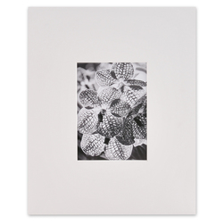 Bainbridge® Artcare™ Gallery Precut Mat - 11 in. x 14 in.