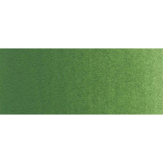 Holbein Artist Watercolor - 0.17 oz. (5 ml) Tube - Terre Verte