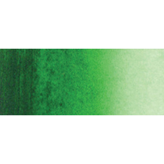 Holbein Artist Watercolor - 0.17 oz. (5 ml) Tube - Hooker's Green