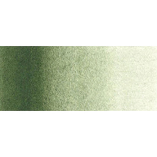 Holbein Artist Watercolor - 0.17 oz. (5 ml) Tube - Green Gray