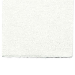 Winsor & Newton™ Professional Watercolor Paper - Rough 10 in. x 14 in.