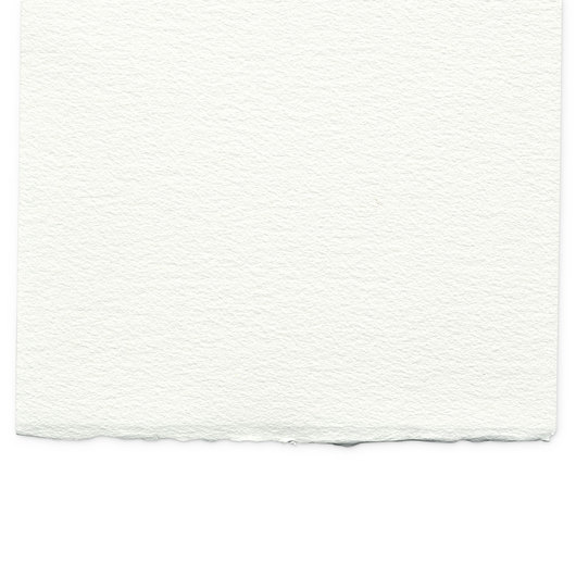 Winsor & Newton™ Professional Watercolor Paper - Rough 12 in. x 16 in.