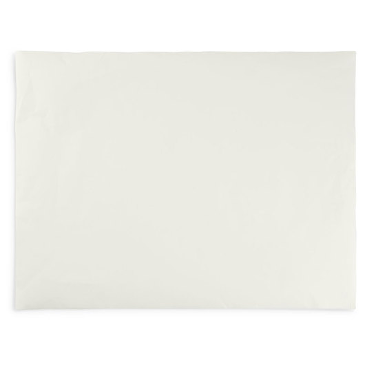 Ingres Pastel Paper - 19 in. x 25 in. - White