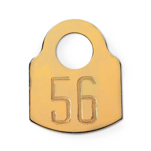 Solid Brass Tag, Numbered 1-100