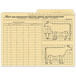 Nasco Record File Folders