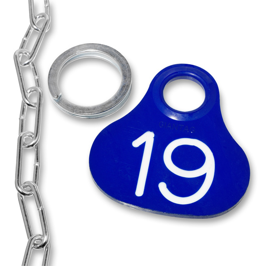Nasco Giantag - Tag, Ring, and #2 Straight Chain Set, Blue, Tags Numbered 1-100