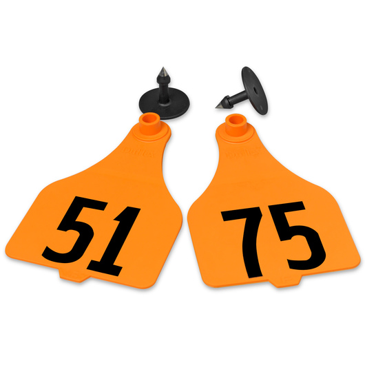 Destron Fearing™ Extra Large Numbered Tags (with Studs) - Orange, Numbers 51-75
