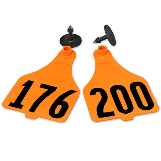 Destron Fearing™ Extra Large Numbered Tags (with Studs) - Orange, Numbers 201-1,000