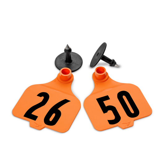 Destron Fearing™ Large Numbered Tags (with Studs) - Orange, Numbers 26-50