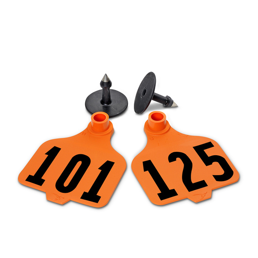 Destron Fearing™ Large Numbered Tags (with Studs) - Orange, Numbers 101-125